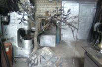 Kalviška skulptūra – medis
